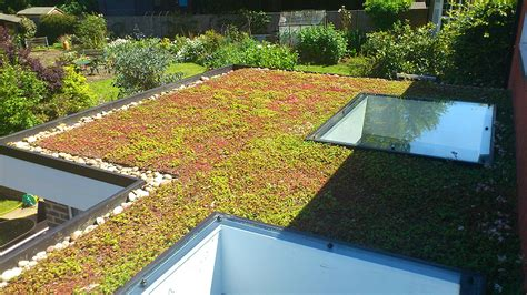 green roof green roofs eco friendly flat roofing duoply ar systems