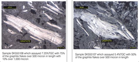 graphite thin section projects east kimberley graphite