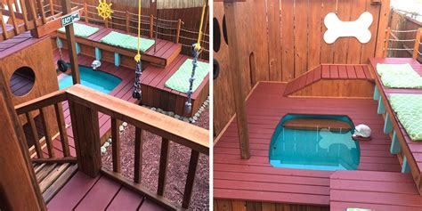 dog owner transforms  backyard   large playground