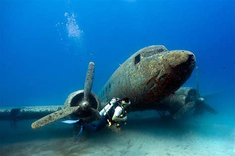 underwater dive d extraordinaires photos des tr 233 sors des oc 233 ans de la