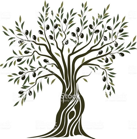 olive art olive tree clip art black models picture