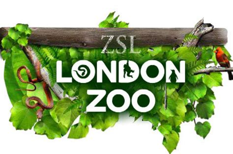 discount vouchers for uk zoos london zoo animal adoption gift sponsor an animal