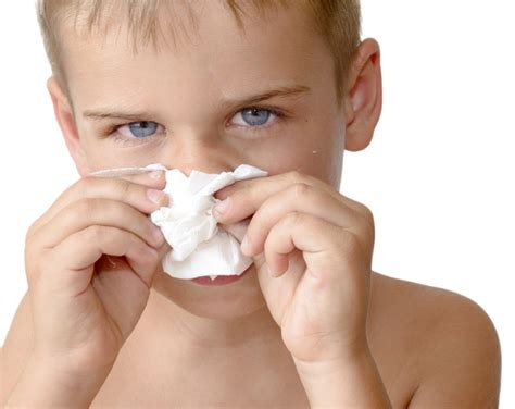 color of boogers what does green snot in toddler new health advisor