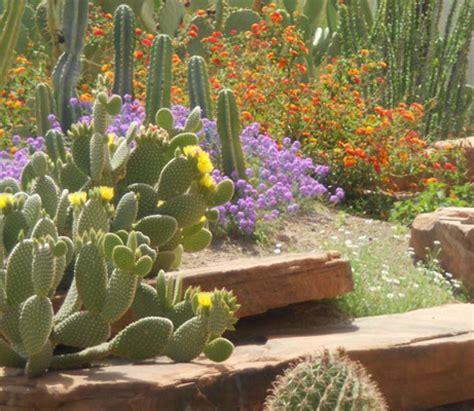 botanical cactus gardens las vegas free things to do in las vegas with travelingmom
