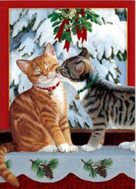 cat cards just cats quot hello quot at