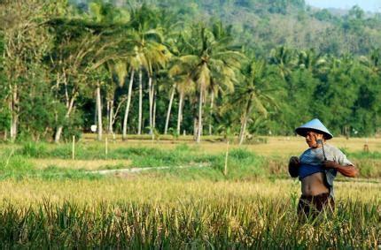Ekonomi Sumber Daya Alam Dan Lingkungansuparmoko Bpfe nilai biologi ekonomi dan budaya dari sumber daya alam
