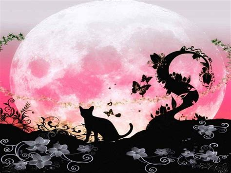 pink fairy wallpapers wallpaper cave