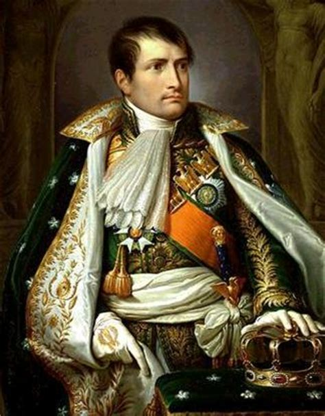 napoleon bonaparte brief biography biography of napoleon bonaparte faysal memon