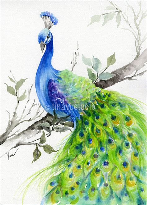 original watercolor painting peacock painting peacock peacock painting original watercolor painting peacock