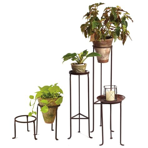 Stand Planter iron plant stands 8 quot diameter co de fiori