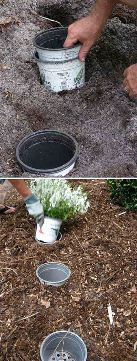 clever gardening tricks tutorials  enhance  garden