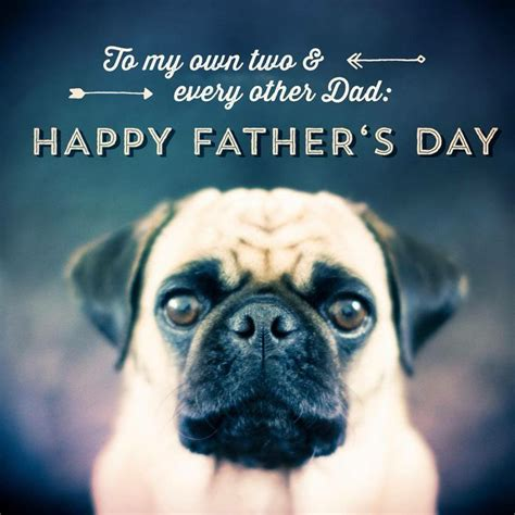 happy pug day 84 best images about is better with a pug on puppys pug and