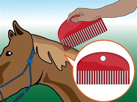 cavallo clipart come strigliare un cavallo 8 passaggi illustrato