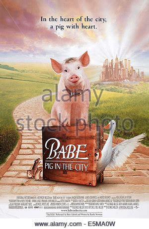 babe film ferdinand ferdinand babe the pig babe pig in the city 1998 stock