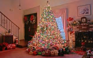 decorated trees wallpapers pics pictures