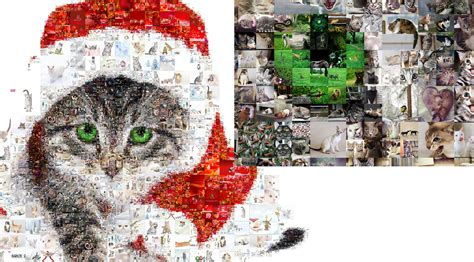 create a picture collage look at the 100 crop of the photo collage to see the