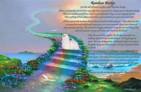 rainbow bridge cogins pomeranians rainbow bridge