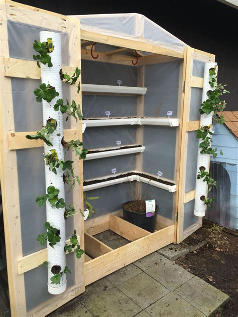 Pvc Garden Ideas Greenhouse With Pvc Pipe And Gutters Greenhouse Pvc Pipe Pipes And Gardens