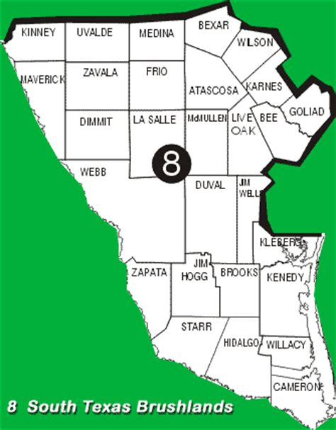south texas counties map tpwd texas partners in flight ecological region 8 south texas brushlands
