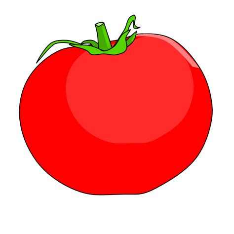 Läuse An Tomaten 5263 by Tomate Dibujo Www Imgkid The Image Kid Has It
