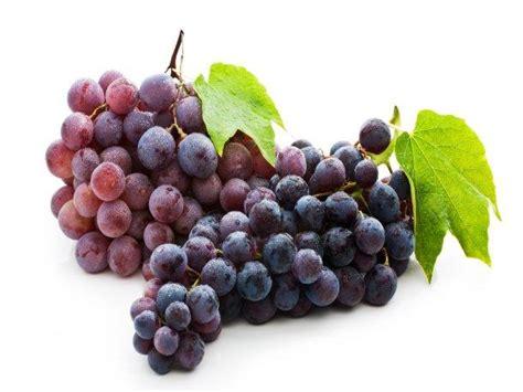 imagenes de uvas reales 5 principales beneficios de la uva para los ri 241 ones