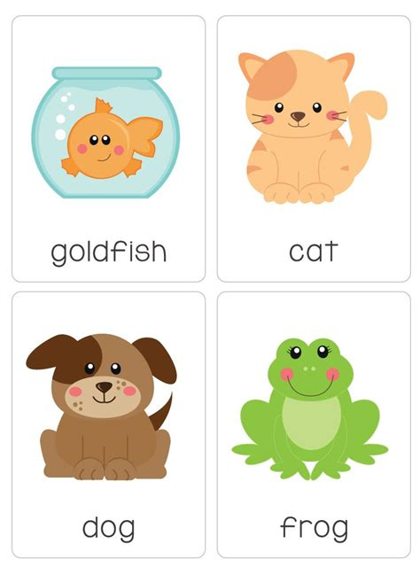My Pet our set of printable quot my pets flash cards quot are a great
