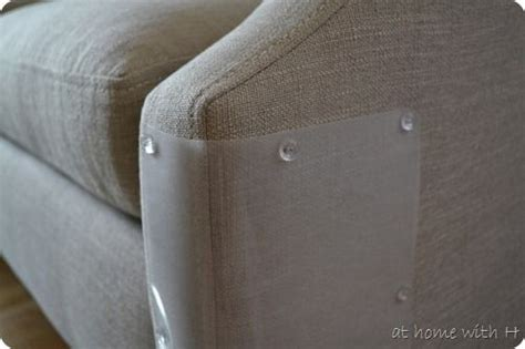 cat scratch proof couch 17 best images about for the beasts on pinterest chicken