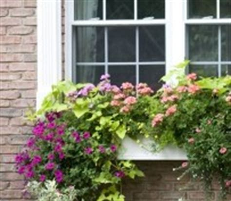 wow window boxes wow windowboxes recipes by tobin