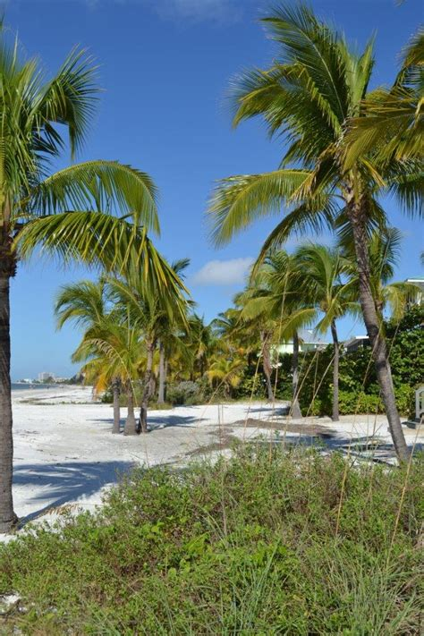 Wedding Planner Fort Myers fort myers tropical wedding planner