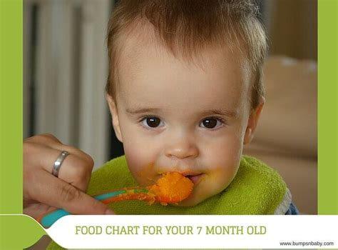 fruit 8 month baby 7 month feeding schedule with free sle food chart