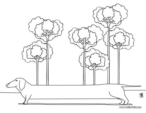 dachshund puppies coloring pages dachshund coloring pages hellokids com