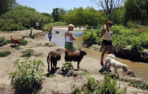 leash park denver top 5 leash parks in denver woof in boots