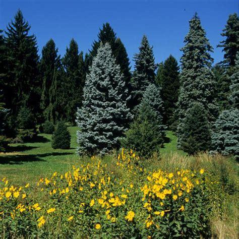 Harvard Botanical Garden Garden Walks In Massachusetts Gardens In Ma Garden Walks In Ma