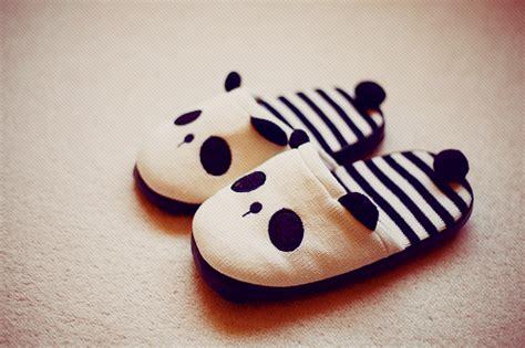 panda slippers 熊猫 panda stuff thessui panda slippers homg