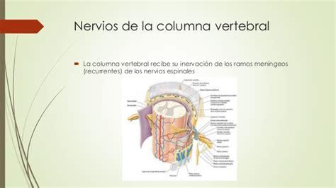 libro la columna de la columna vertebral