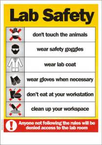 here is a site with lab safety rules here is a website t