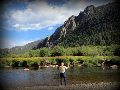 archer s poudre river resort cabin 4 fishing near cabin picture of archer s poudre river