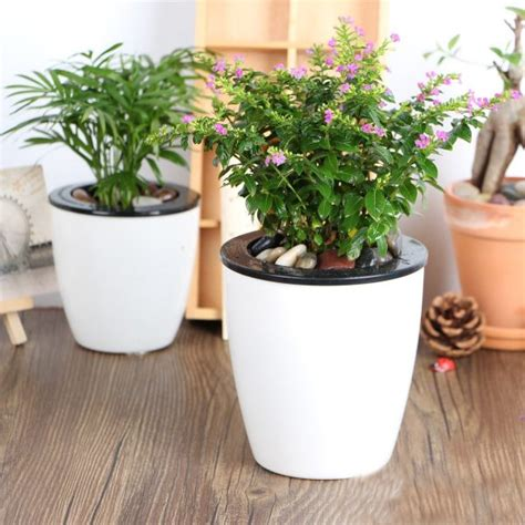 self watering planter the big list of self watering planters for stylish