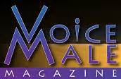 voice the untold story of the pro feminist s movement books national center on domestic and sexual violence