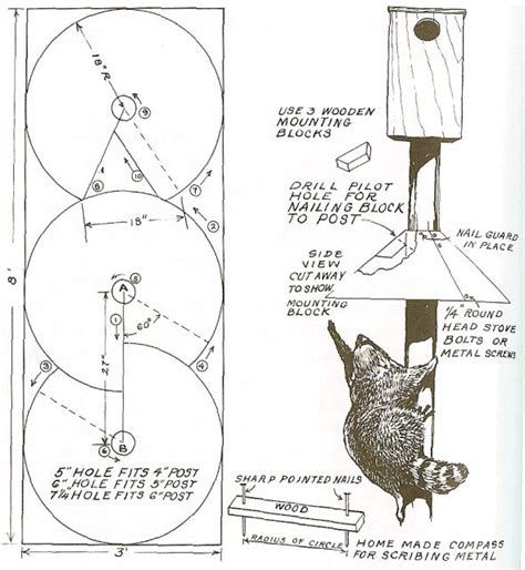 dyi squirrel baffle conical baffle instructions craft
