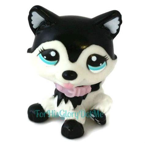 lps husky puppy dogs huskies memes
