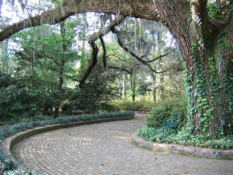 Maclay Gardens by Path In Maclay Gardens