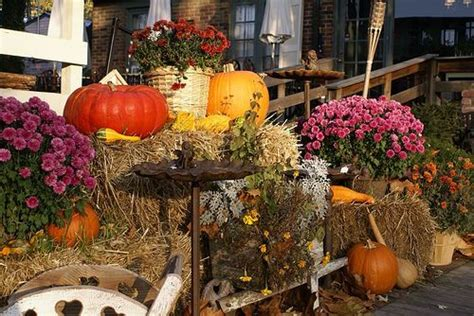 decorating for fall outside outdoor fall decorations holidays
