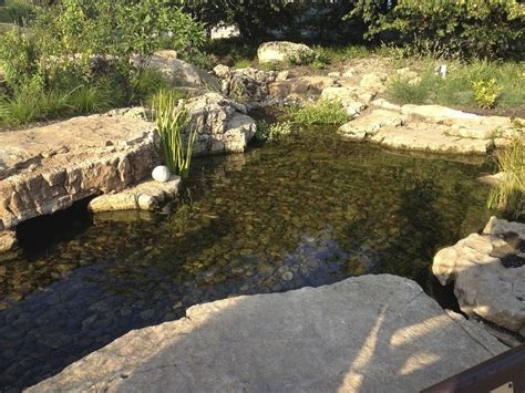 aquascape ponds gallery water feature pond ideas for your back yard