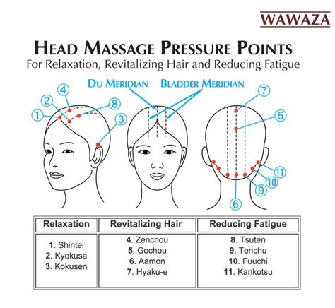 pressure points hair growth 25 best ideas about human pressure points on pinterest