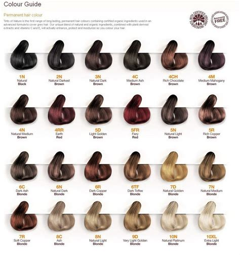 redken color and pregnancy 17 best images about hair color chart trendhaircolor com