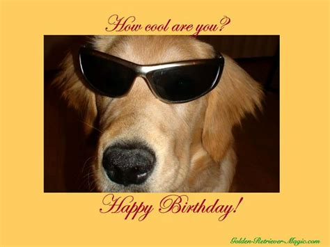 printable birthday cards dogs happy birthday with dogs images free dog ecards free