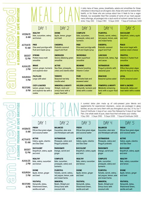 Best Detox Plan 2014 by Cleanse Program Meal And Juices