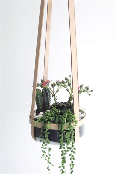 ceiling plant hangers plant hanger leather ceiling planter hanging mini