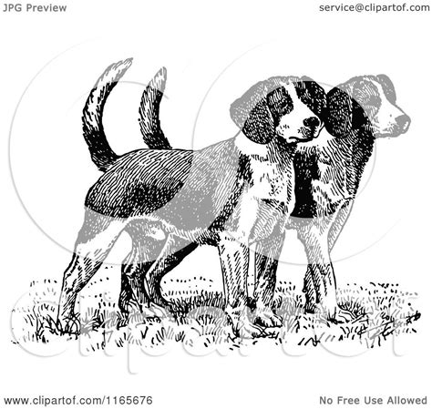 black and white beagle puppies clipart of retro vintage black and white beagle puppies royalty free vector
